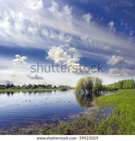 Spring landscape at the spread lake with water-lilies - stock photo