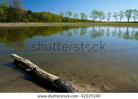 Spring landscape. Green trees on blue sky background
