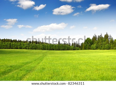 Spring landscape in the national park Sumava - Czech Republic #82346311