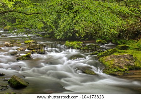 Spring landscape of the Oconaluftee River framed by branches and captured with motion blur, Great Smoky Mountains National Park, North Carolina, USA