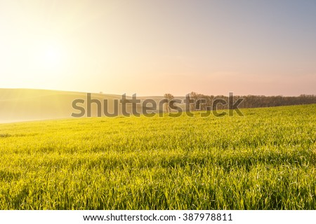 spring landscape with...