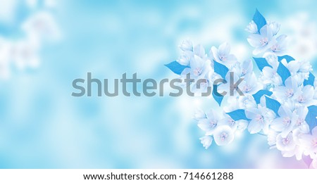 Spring landscape with delicate jasmine flowers #714661288