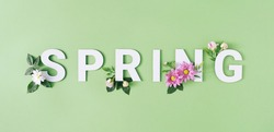 Spring letters with white and pink flowers against pastel green background. Minimal nature season concept.