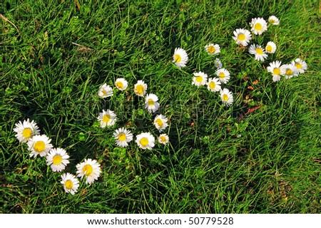 love spring: