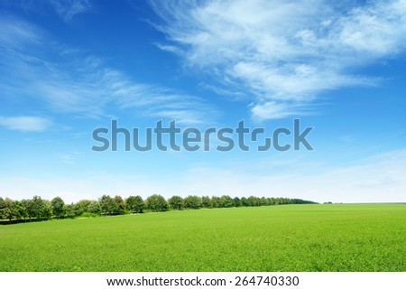 spring meadow and blue sky - Shutterstock ID 264740330