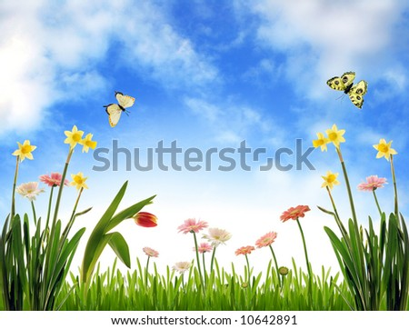 Spring meadow with flowers and blue sky