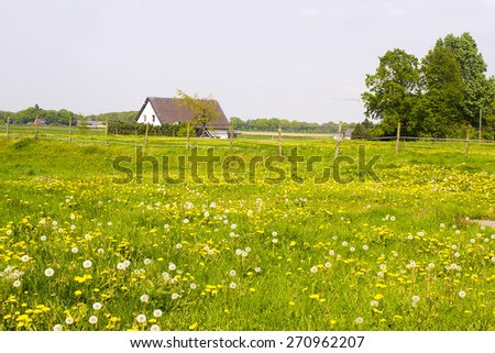 Spring meadows around a rural house, Germany