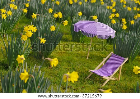 Spring, model canvas chair and parasol on a flower meadow