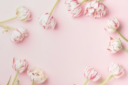 Spring morning concept. Flat-lay of flowers over light pink background, top view with space for your text