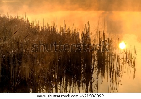 Spring morning landscape at sunrise. Rising sun over the pond.