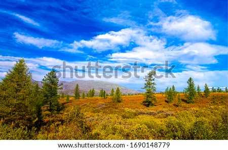 Spring nature field landscape. WIlderness plain landscape. Spring in steppe. Nature field view