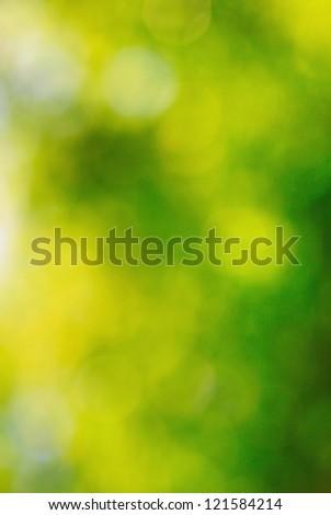 Spring nature leaf bokeh background - stock photo