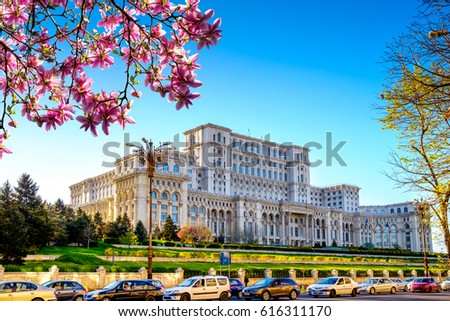 Spring near the the Palace of Parliament in Bucharest, Romania, is a multi-purpose building containing both chambers of the Romanian Parliament. Blue sky and magnolia tree.