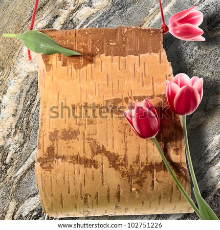 Spring notice. Flowers and scroll from birch bark with copy-space.