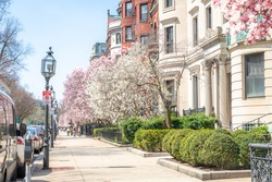 Spring on Commonwealth Ave in Boston