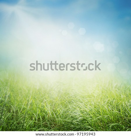Spring or summer abstract nature background with grass in the meadow and sunny sky in the back