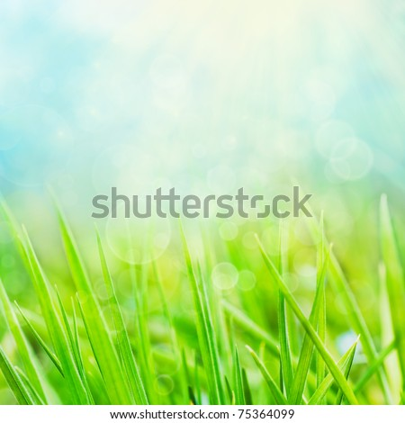 Spring or summer abstract season  nature background with grass and bokeh lights. - stock photo