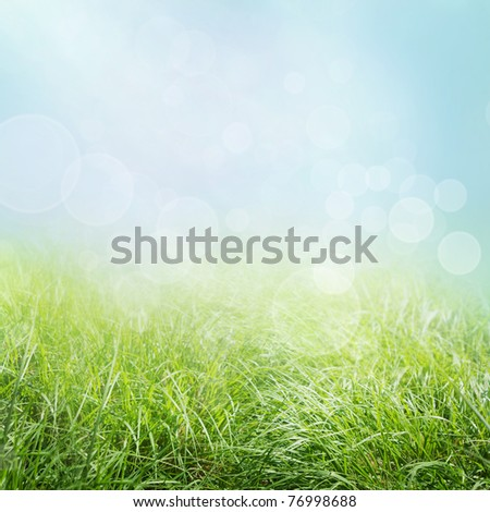 Spring or summer abstract season  nature background with grass and bokeh lights.