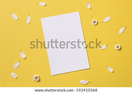 Spring or summer background with copy space for text: blank stationary template / invitation mockup, chamomiles and petals around. Top view. Flat lay.