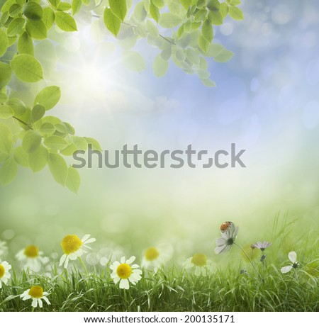 Spring or summer season abstract nature background with grass and blue sky in the back  - Shutterstock ID 200135171