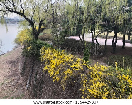 Spring outdoor park #1364429807
