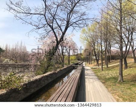 Spring outdoor park #1364429813