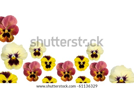 floral border clipart. flower clip art borders.