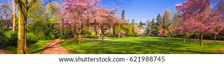 Spring Park landscape. Panoramic view of a park #621988745