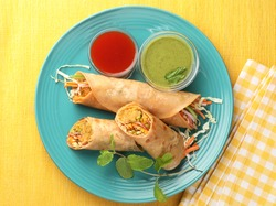 Spring rolls or vegetable rolls or vegetable wrap with tomato sauce and mint dip, Asian food