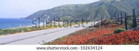 Spring, Route 1, California Coast
