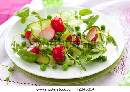 spring salad with radishes,cucumber,green peas and sprouts - stock photo