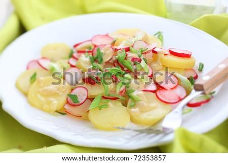 Spring salad with radishes, potato and fresh green onion - stock photo