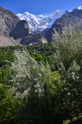 Spring season of Hunza valley in Pakistan.It is the baltit fort on the hill.