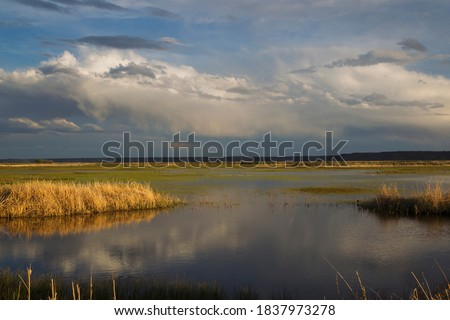 Photo of  Spring storm over wetland of wildlife preserve