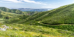 Spring Stroll - The Miwok Trail leads down a valley, with the Golden Gate and San Francisco in the distance. Marin Headlands, California, USA