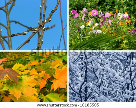 Spring, summer, autumn and winter, nature seasons background