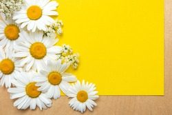 Spring summer pattern chamomile on yellow background and wooden desk