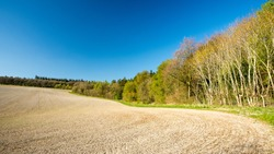 Spring sun shines on Wendover Woods and a ploughed field in the Hale in England's Chiltern Hills.