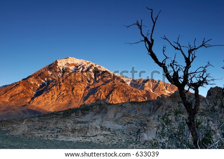 Spring sunrise in the Sierra Nevada mountains near Bishop, California