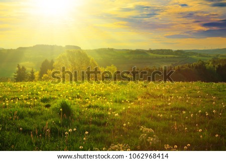 Spring sunset over the green field. #1062968414