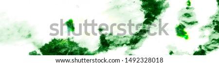 Spring Texture. Green Marine Flora. Artistic Underwater Plants. Hand Drawn Marine Flora. Summer Marine Flora. Seaweed Flora Texture.
