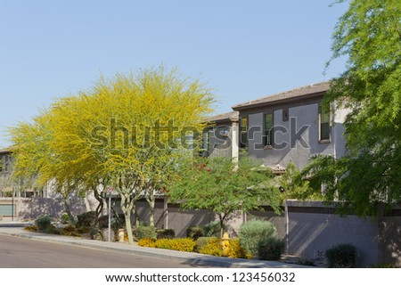 Spring time at residential gated community as seen from public street, Phoenix, Arizona