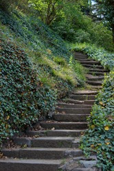 Spring time: step way in the garden