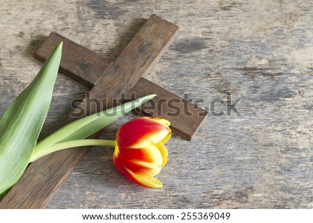 Spring tulip and cross abstract easter concept - Shutterstock ID 255369049