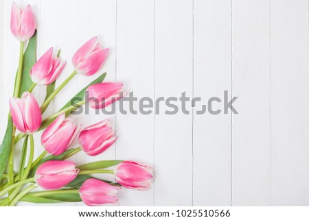 Spring Tulips Background #1025510566