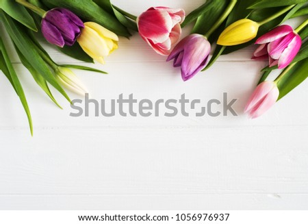 Spring tulips flowers on a white wooden background