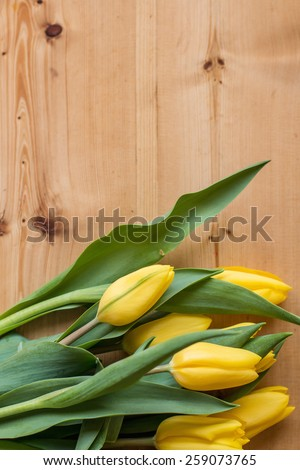 Spring tulips, national women\'s day, tulips