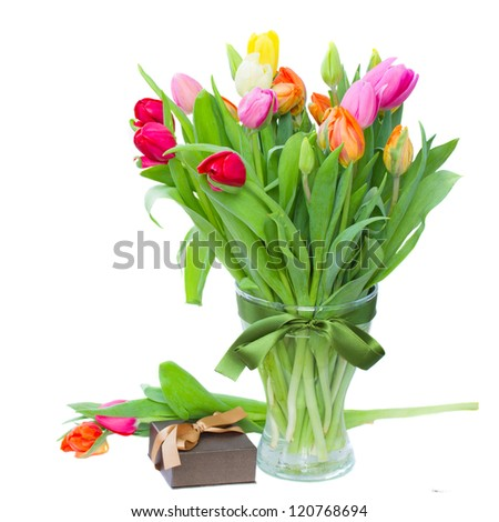 spring tulips with present box isolated on white background