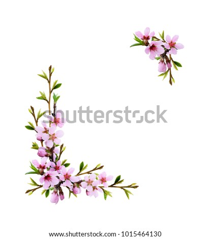 Spring twigs of peach flowers and early leaves in corner arrangements isolated on white background #1015464130