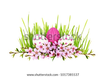 Spring twigs of peach flowers and early leaves with painted eggs and green grass in line Easter arrangement isolated on white background. Flat lay. Top view. #1017385537